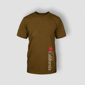 http://hotel.bold-themes.com/summer/wp-content/uploads/sites/2/2013/06/tshirt-brown-1-300x300.jpg