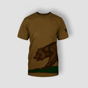 http://hotel.bold-themes.com/summer/wp-content/uploads/sites/2/2013/06/tshirt-brown-2-300x300.jpg