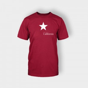 http://hotel.bold-themes.com/summer/wp-content/uploads/sites/2/2013/06/tshirt-red-2-300x300.jpg